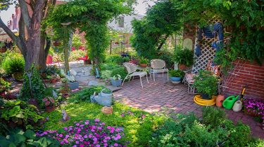 5 Latest Trends of Landscaping & Gardening